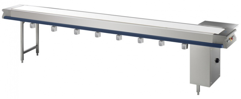 Belt conveyor system for portioning